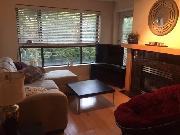 Ultra Bright 2 Bedroom Condo in Kitsilano, Vancouver