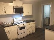Furnished, 2 Bedroom Bsmt. Suite in Dunbar/Southlands