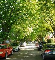 My house is in the beautiful Point Grey - Dunbar neighbourhood